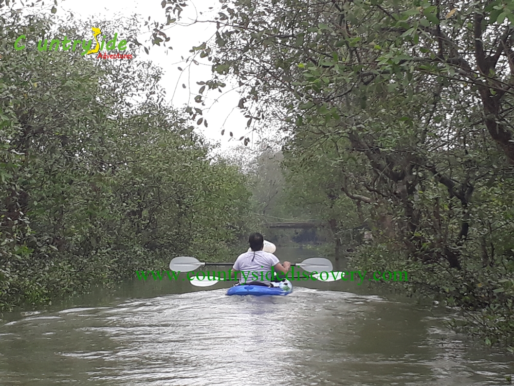 EXPERIENCE MEKONG DELTA BY KAYAK & BIKE FULL DAY ACTIVITIES
