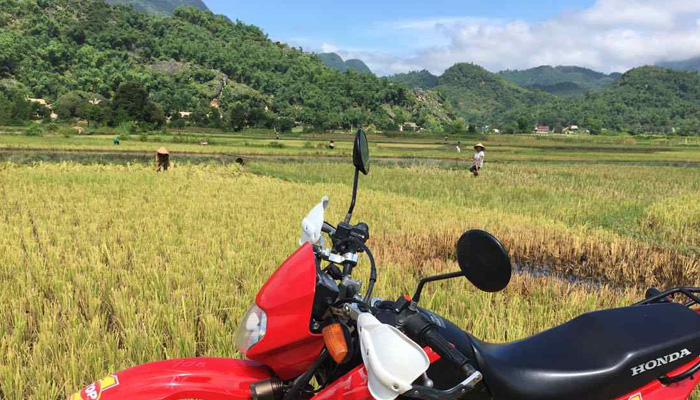 Bike-tours-in-vietnam