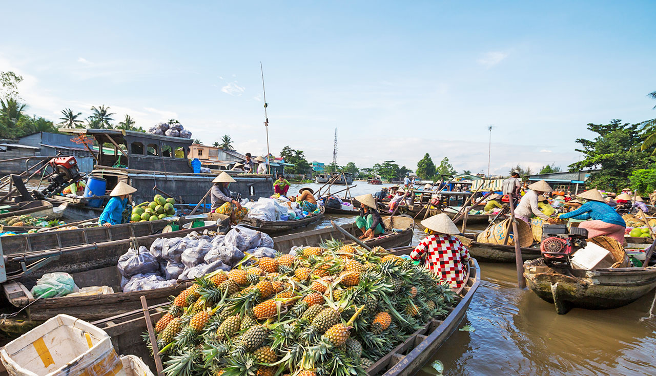 Vietnam's Grand Discovery: 14 Days