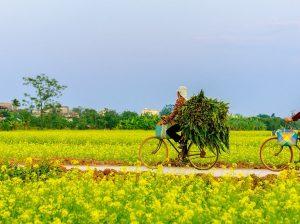 Vietnam & Cambodia hidden charm discovery